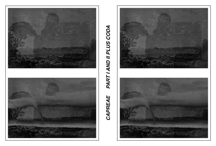capreae-dvd-layout-vorschau-mit-format