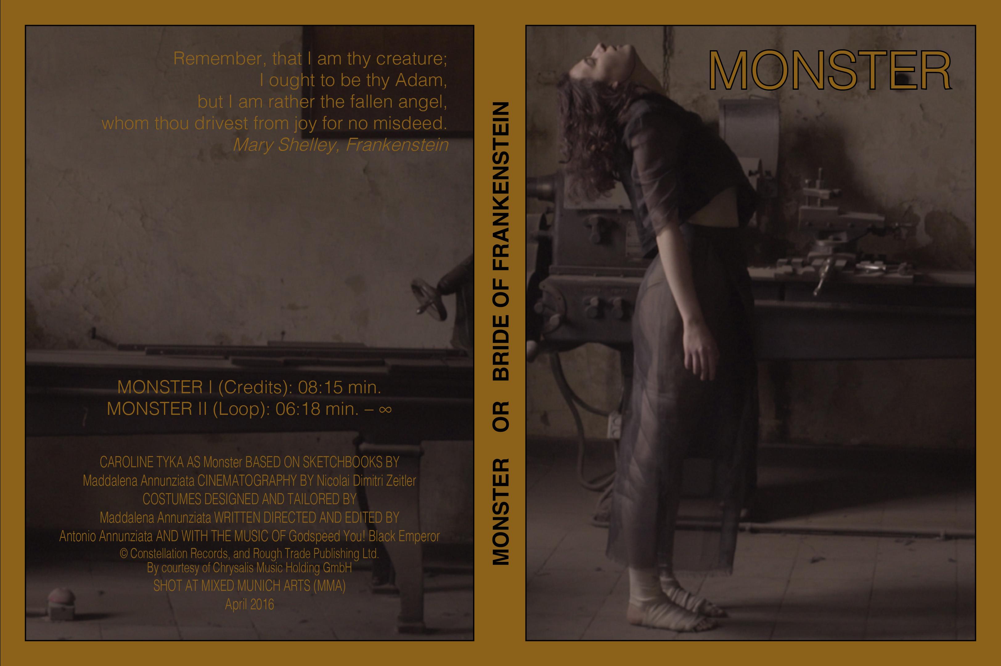 monster-dvd-layout-ivcr-vorschau